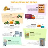 Bread Production Stages Infographics. Bread production infographics, stages  from grain sowing to goods delivery in shop on light background vector illustration Royalty Free Stock Photos