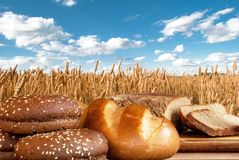 Bread products on the background of a wheat field royalty free stock photos
