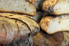 Bread from Puglia Puglia in round shape Royalty Free Stock Images