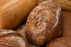 Bread with pumpkin seeds Stock Images