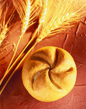 Bread roll. With ears of corn on a reddish background Royalty Free Stock Images