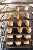 Bread rolls on trays of shelf Stock Photography