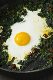 Fried egg and spinach Royalty Free Stock Image