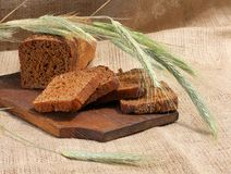 Bread rye cut with slices and ripe ears Royalty Free Stock Images