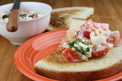 Bread and salad. Salad from mozzarella, yogurt, tomato and radish in bowl and on bread Royalty Free Stock Photography