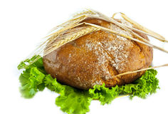 Bread and salad. Isolated on the white. stock photos
