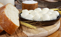 Bread, salt and cheese. Slices of bread with mozzarella and salt Stock Image