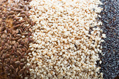 Bread seeds close up Stock Photography