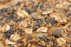 Bread with seeds Stock Photography