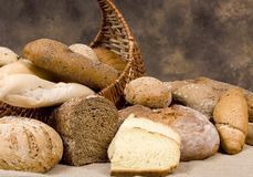 Bread Series (assortment of breads) Stock Image