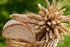 Bread. And sheaf of wheat and barley Stock Images