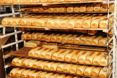 Bread on shelves Stock Images