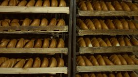 Bread on the shelves. Packaged bread. Many of bread in the hangar. Manufacture of bread. Racks of bread at the bakery