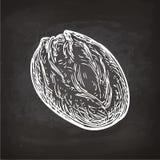 Bread sketch on chalkboard Stock Photos