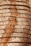 Bread. Sliced ​​bread on a wooden board Stock Photography
