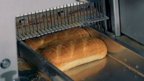 Bread slicing, close up. Mechanical cutter works at a bakery plant. stock video footage