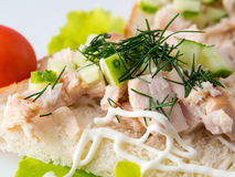 Bread with smoked chicken and cucumber. Royalty Free Stock Image