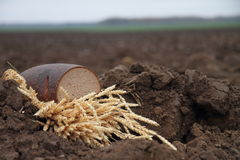 Bread in a soil. Loaf of bread in a soil stock image