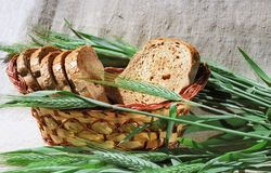Bread and spicas of rye Stock Images