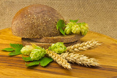 Bread spikelets hop Royalty Free Stock Photos