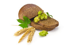 Bread spikelets hop Stock Photos
