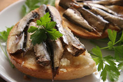 Bread and sprats. Fried bread with sprats and garlic Stock Photos