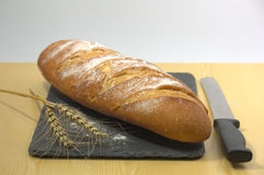 Bread with a sprig of wheat Stock Photo