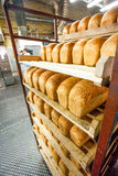 Bread stacked on the shelves at new bright factory Royalty Free Stock Image