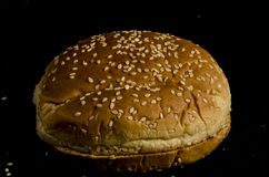 Hamburger buns with lot`s of seed`s. Bread is a staple food prepared from a dough of flour and water, usually by baking. Throughout recorded history it has been royalty free stock images