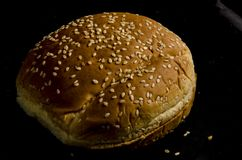 Hamburger buns with lot`s of seed`s. Bread is a staple food prepared from a dough of flour and water, usually by baking. Throughout recorded history it has been royalty free stock photos