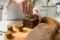 Bread tests in a laboratory Royalty Free Stock Image