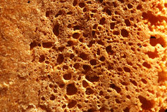 Bread Texture. A closeup view of the texture of a brown bread Royalty Free Stock Photo