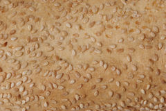 Bread texture. With sesame royalty free stock photography
