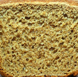 Bread texture. Royalty Free Stock Images