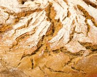 Bread texture Royalty Free Stock Photography