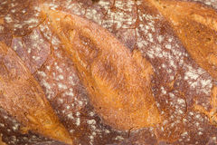 Bread texture Royalty Free Stock Photo