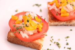Bread with tomatoes and onions Royalty Free Stock Image