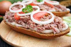 Bread with tuna fish Royalty Free Stock Photo