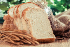 Bread. Variety of bread-Filtered Image royalty free stock photography