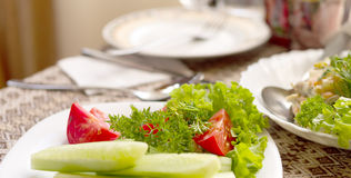 Bread and various salads of tomatoes, cucumbers on white plates on a table in a restaurant Stock Photography