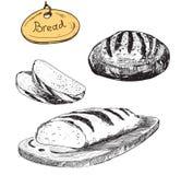 Bread. Vector hand drawn illustrations set. Eps 8 Stock Photo