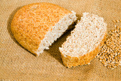Bread and wheat Stock Photography
