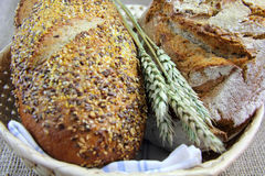 Bread and wheat Stock Images