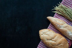 Bread , wheat on black chalkboard for bakery background  with fr Royalty Free Stock Photography