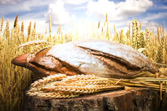 Bread and wheat cereal crops Stock Photo