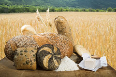 Bread and wheat cereal crops Royalty Free Stock Photography