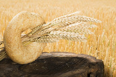 Bread and wheat cereal crops Stock Photography