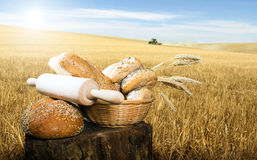Bread and wheat cereal crops Royalty Free Stock Photo