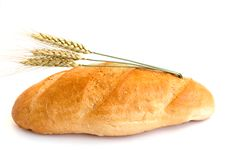 Bread with wheat cones Stock Photography