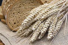 Bread and wheat ears. Sliced brown bread and wheat ears Stock Photography